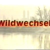 Wildwechsel {Rainer Werner Fassbinder, 1973}